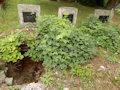 Abramová - hroby na cintoríne pri Abramovej