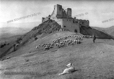 Čachtický hrad - v roku 1953