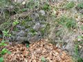 Čierna Lehota - murivo obytnej veže