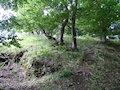 Čierna Lehota - prístupová cesta na hradnom kopci