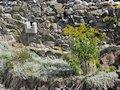 Pustý hrad - časť systému, ktorým sa plnila vodná hradná cisterna