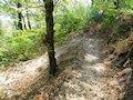 Slanec - cesta k hradu