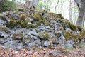 Sučiansky hrad - zvyšky múru pod hradným vŕškom