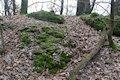 Zelený hrad - zvyšky múru